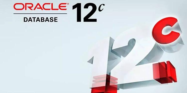 20年资深Oracle老兵:一个经典老问题在12c中的优化实践