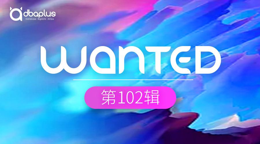 【上海】【兴业数金】数据库工程师、前端开发工程师、前端架构师、分布式开发平台高级工程师